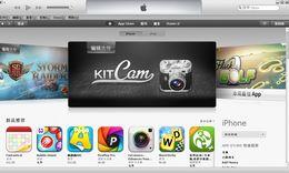 iTunes (僅限于32位系統)
