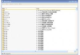 Everything 文件搜索工具