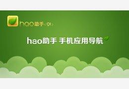 hao助手(91)
