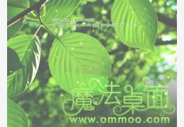 绿色海滨高尔夫桌面主题简体中文官方安装版